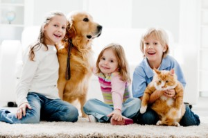 dry carpet cleaning Santa Rosa, Petaluma - green and safe for children and pets
