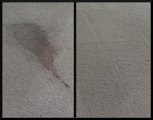 No spots return with our carpet cleaning methods
