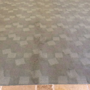 carpet cleaning before and after - BEFORE - Petaluma Business Center-Entry