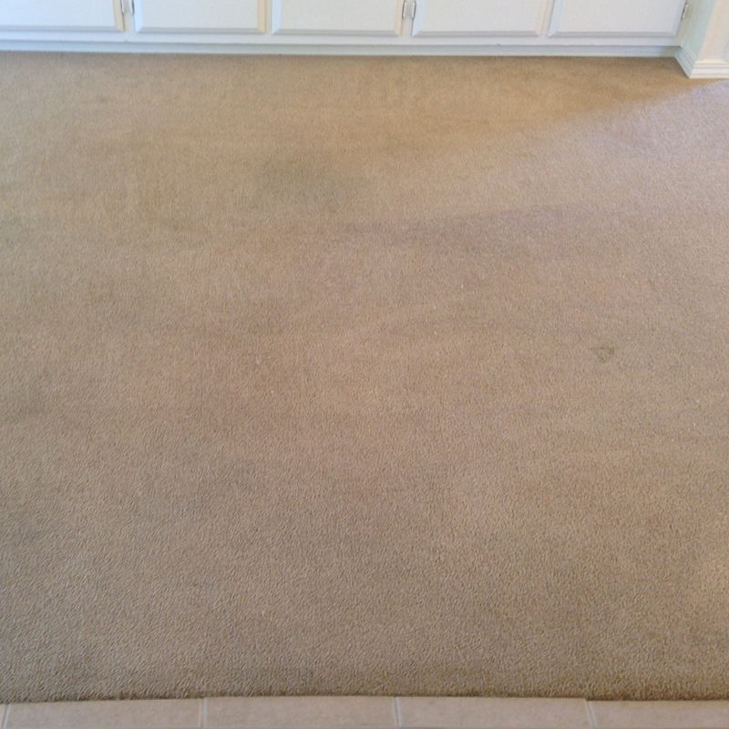 Can This Carpet Be Saved Advanced Dry Carpet Care