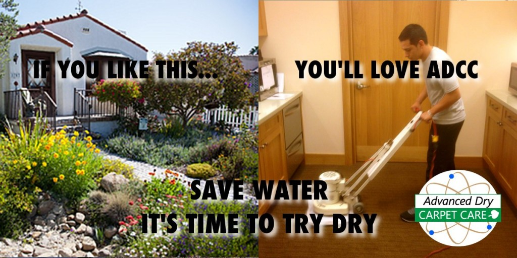save water cleaning carpet