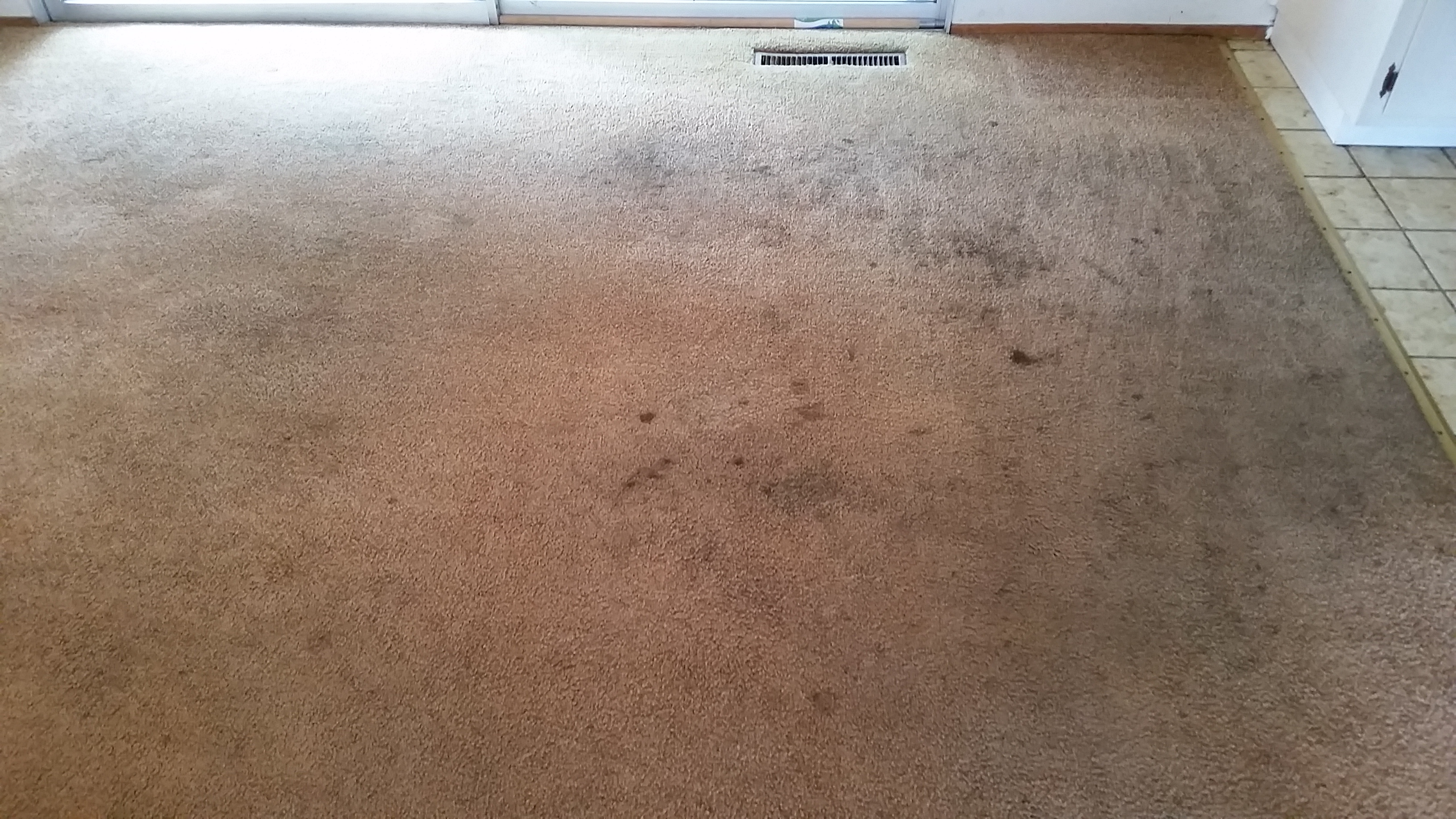 Garz Before 20170908 Advanced Dry Carpet Cleaning And